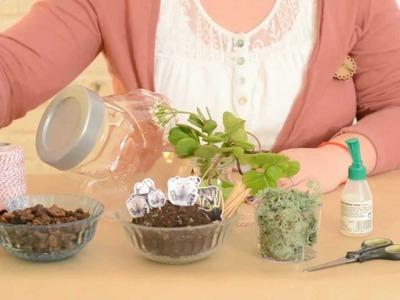 DIY - Cómo hacer un Terrario para Decorar tu Casa con un Tarro de Cristal