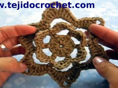 Flor en tejido crochet de 6 pétalos en relieve tutorial paso a paso.