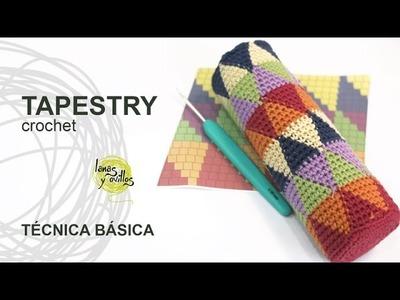 Tutorial Tapestry.Jacquard Crochet o Ganchillo Técnica Básica