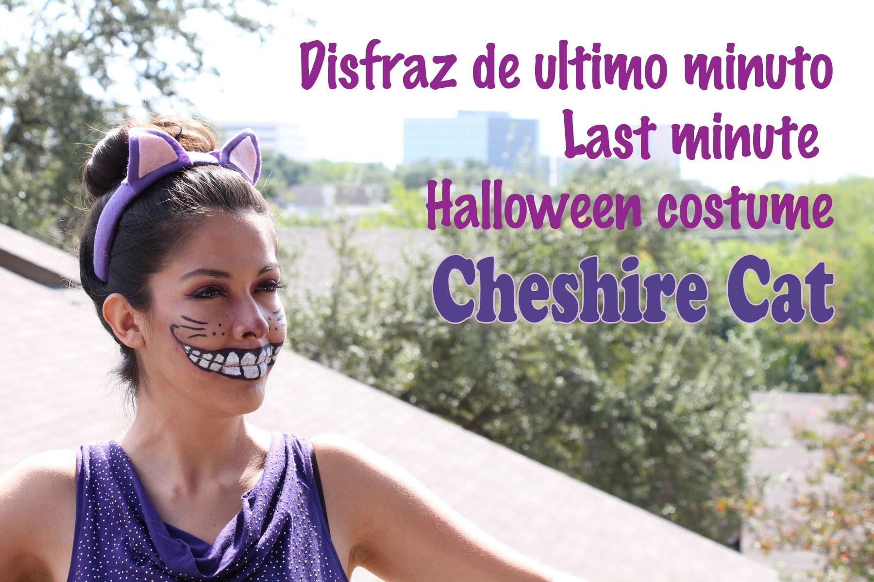 Last minute halloween costume, dizfras de ultimo minuto, Cheshire cat