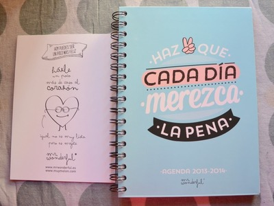 Review Agenda 2013.2014 Mr Wonderful