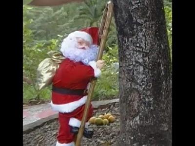 Navidad con Papá Noel en escaleras