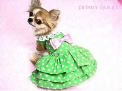 Moldes ropa perro-patterns dogs-diseños-patrones.