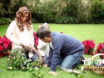 Aprende a hacer una corona navideña con Nora Salinas