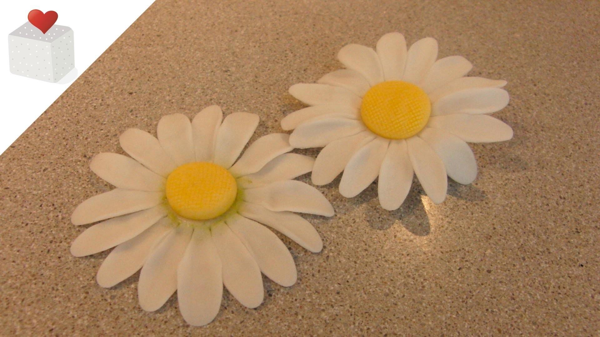 Cómo modelar una Margarita con pasta de flores | Modelado con Pasta de Flores por Azúcar con Amor