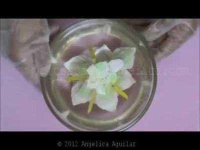 Como hacer Alcatrazes encapsuladas en gelatina