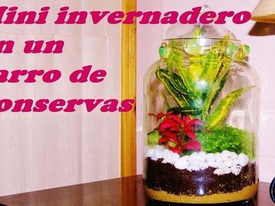 INVERNADERO EN TARRO DE CONSERVAS