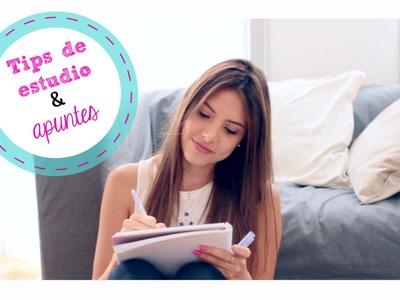 TIPS DE ESTUDIO + Organización de Cuaderno