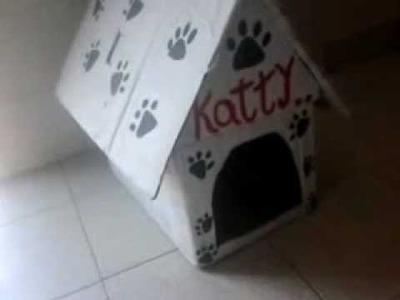 Como Hacer una casa para Perros Fácil y gratis.