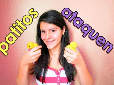 Patos que atacan mujeres | bromas pesadas, sustos de terror, bromas de miedo, bromas a mujeres