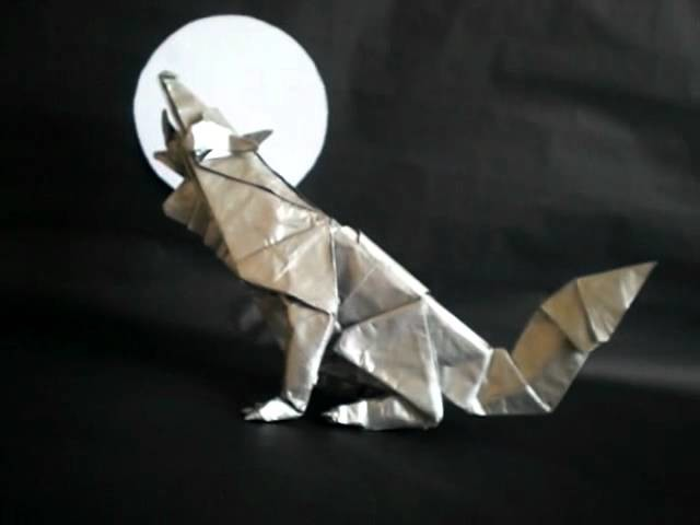 Lobo gris (Grey wolf)