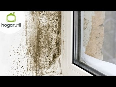 Eliminar manchas de humedad con pintura