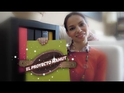 Cómo catalogar fotos: El Proyecto Mamut  *Organización*