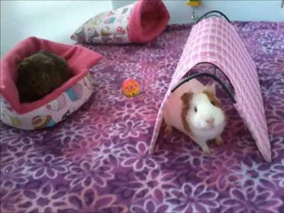 Cómo hacer una jaula casera  C y C para cobayos (cuyo, güimo, guinea pig) - Parte 1 de 2