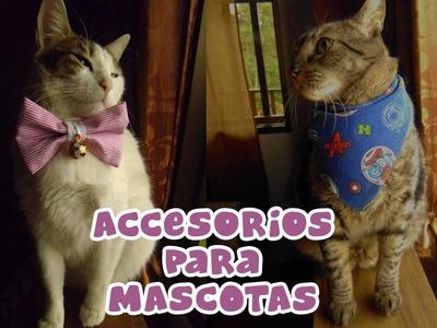 Cómo hacer pañoleta y moño para tu mascota - Candy Bu