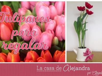 Planta Tulipanes en Agua y Tierra - DIY Alejandra Coghlan