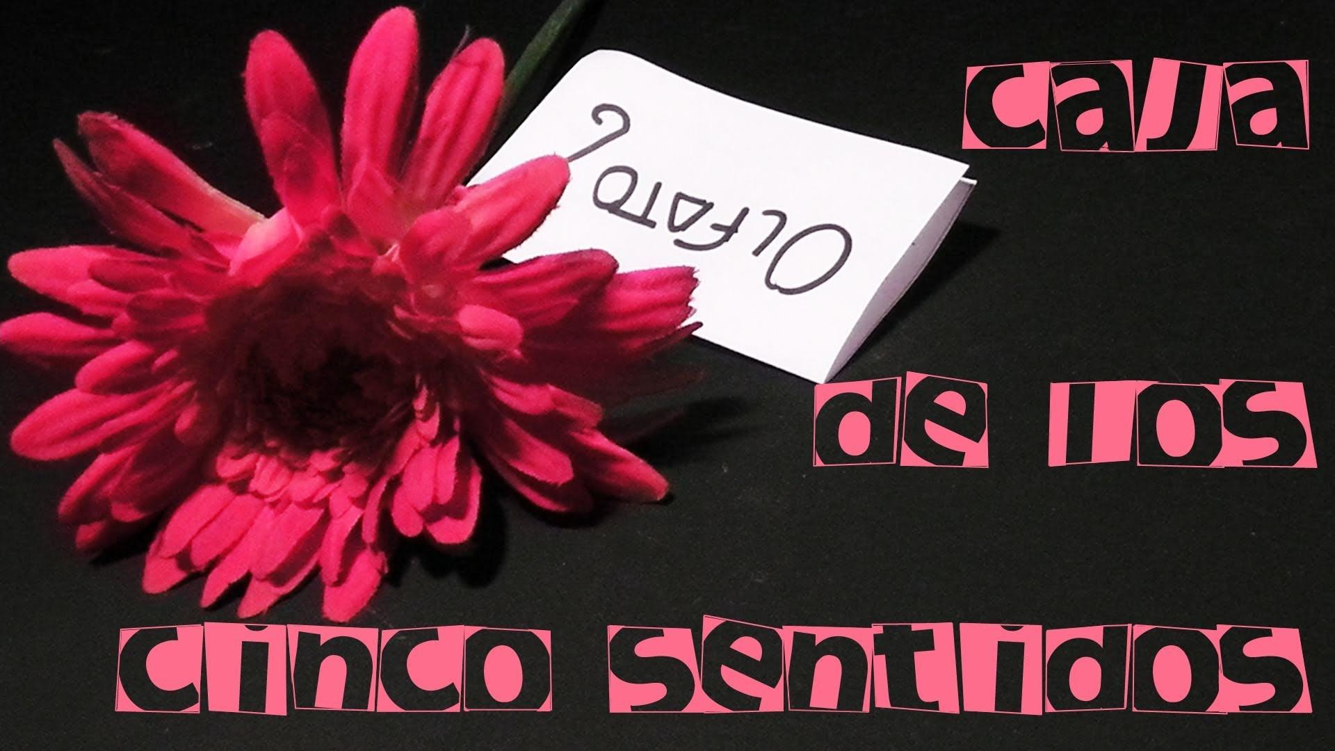 Caja de los 5 sentidos parte1.2  ||Manualidades para San Valentin