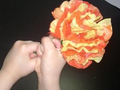 Flor Mexicana Multicolor