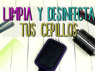 Cómo Limpiar Cepillos de Cabello - 2 Recetas Caseras - Cuidado del Cabello