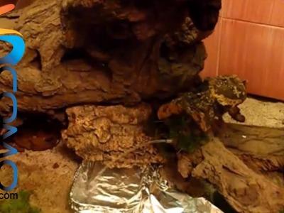 Cómo hacer una cascada real para el pesebre