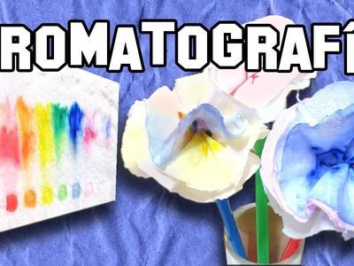 Cromatografia en Papel | Paper chromatography