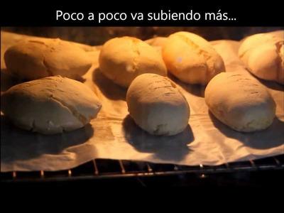 Pan rustico sin gluten. www.canalsingluten.com .Rustic bread gluten free