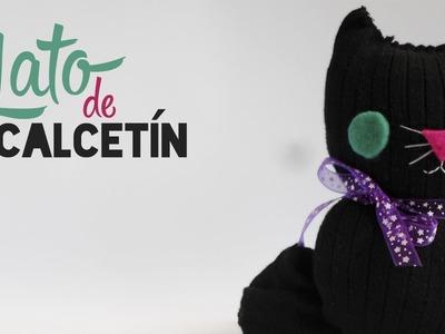 Gato de Calcetín || Entre Calabazas y Catrinas 2.0 ||