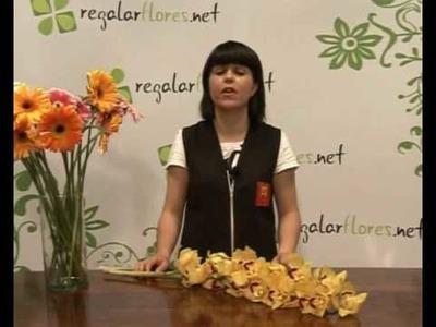 Ramos de flores - Conservación