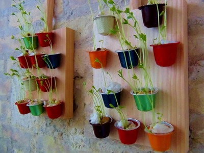 Jardín vertical con cápsulas de café How to make a decorative mini wall garden with lentils