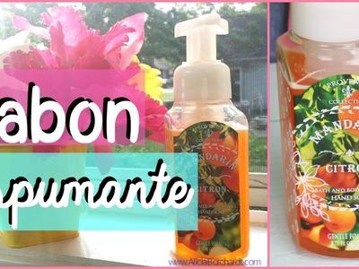 Como hacer Jabón liquido casero (para manos) ecológico y espumante. Alicia Borchardt