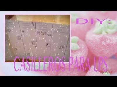 DIY-COMO HACER CASILLEROS PARA TUS LPS