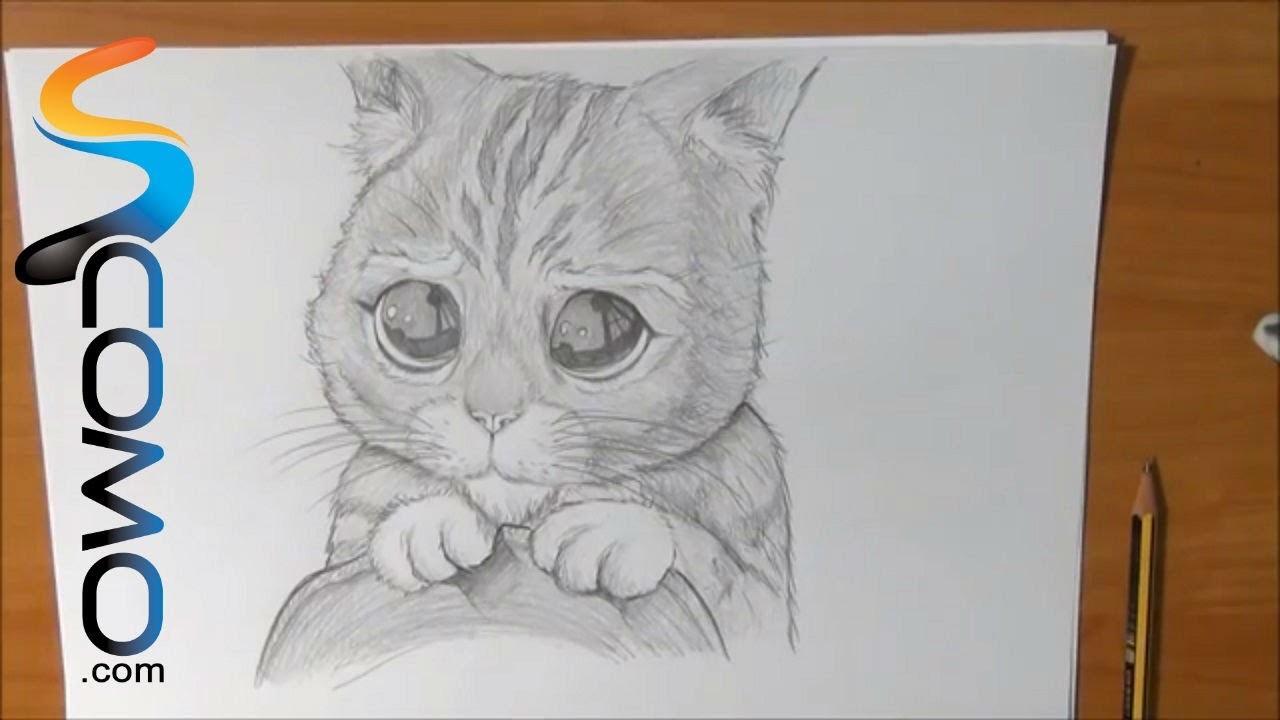 Dibujar al Gato con Botas de Shrek