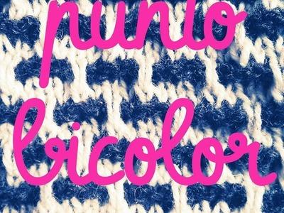 Punto Bicolor primera parte - Soy Woolly