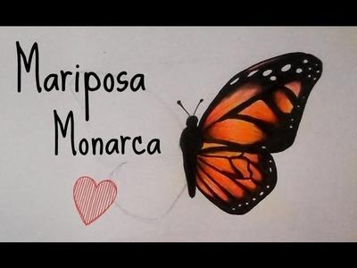 Como Dibujar y Colorear una Mariposa