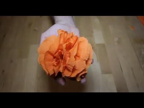 Cómo hacer una flor de papel pinocho | facilisimo.com