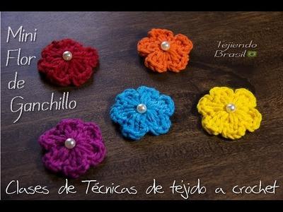 Tejiendo Brasil - Mini Flores de Ganchillo