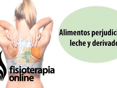 Alimentos perjudiciales para tu espalda - Leche y derivados.