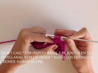 Cómo hacer punto Avellana en Crochet (bolitas)