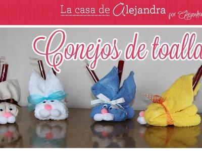 Conejos de Toalla - DIY. Alejandra Coghlan