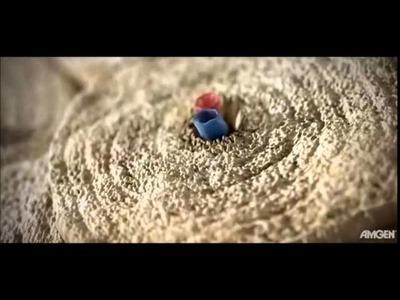 ESTRUCTURA DEL TEJIDO OSEO 3D