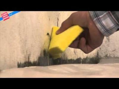 Ferretotal - ¿Cómo eliminar Moho en las paredes?