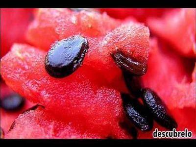 Los secretos que esconden las semillas de sandía para la salud!