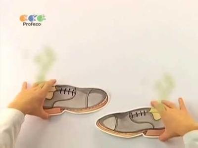"""Desodorante para calzado [""""Tecnología Doméstica Profeco TV"""" 24.5]"""