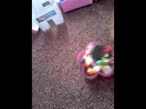 Mis manualidades para Littlest Pet shop