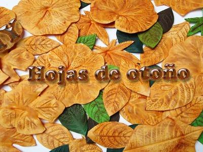 Hojas de otoño hechas de Foamy, Goma eva | DIY |  autumn leaves