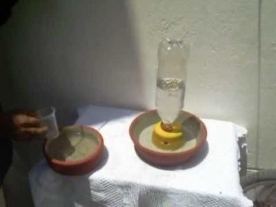 Bebedero Filtrador de Agua