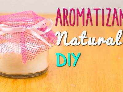 Aromatizante Natural Casero - En 5 minutos - Receta Fácil - Mini Tip #51