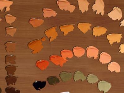 Cómo hacer color piel en diferentes tonalidades 1 Curso de pintura