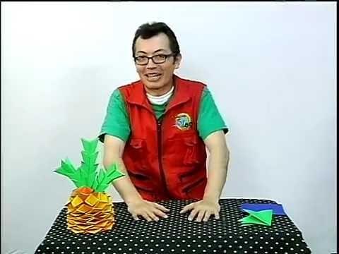 Piña de Origami (D.R.A.) en Canal 5 ¡Tu Canal!