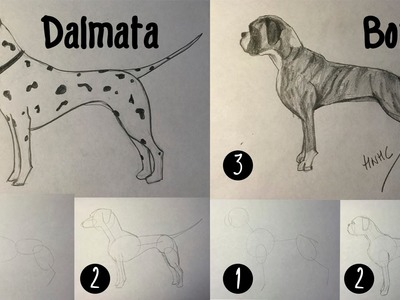 Como dibujar un perro dálmata y bóxer paso a paso